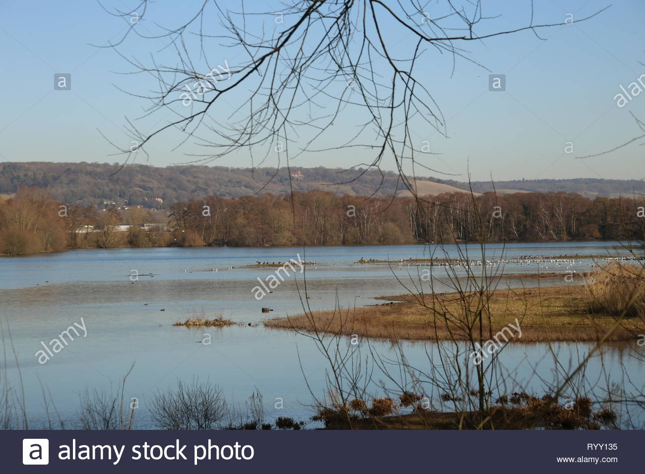 Wetlands in danger - human activity has significantly affected wetland habitats, continuing to cause loss of wetlands & a decline in wildlife species. - Stock Image