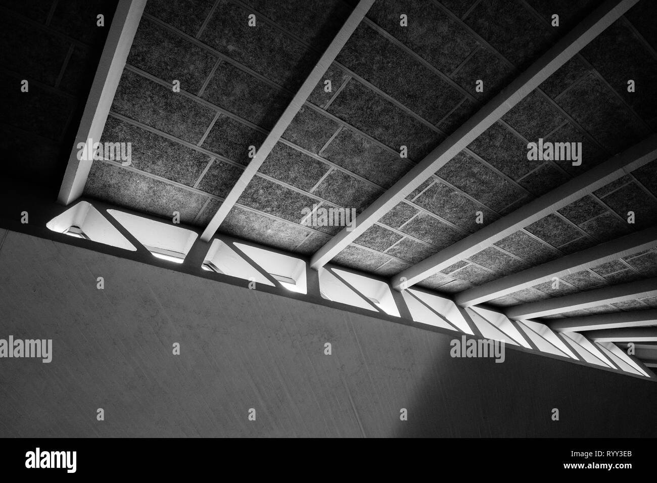 Architectural ceiling and window detail. Urban print, high contrast black and white, London Stock Photo