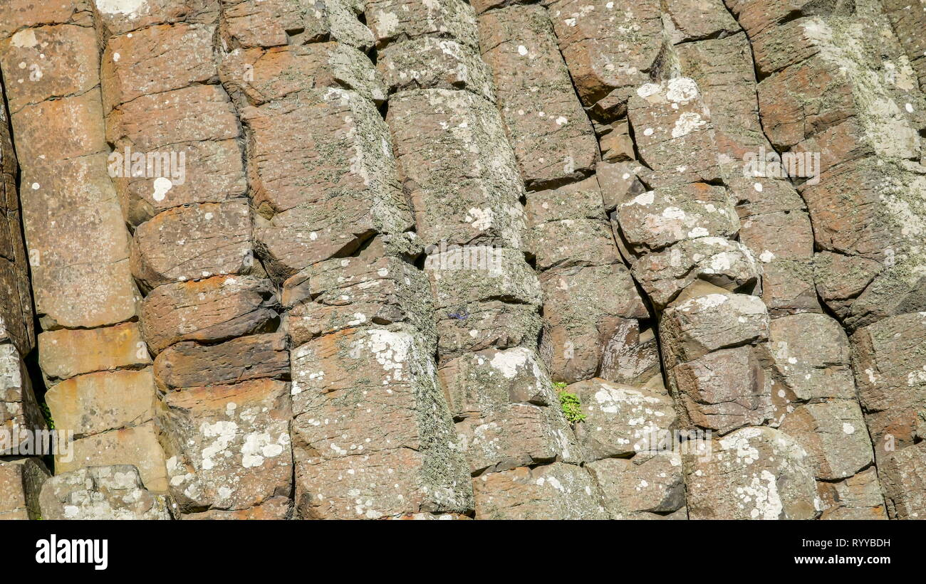 Closer look of the rock formation in the area of Giants Causeway in the Northern Ireland - Stock Image