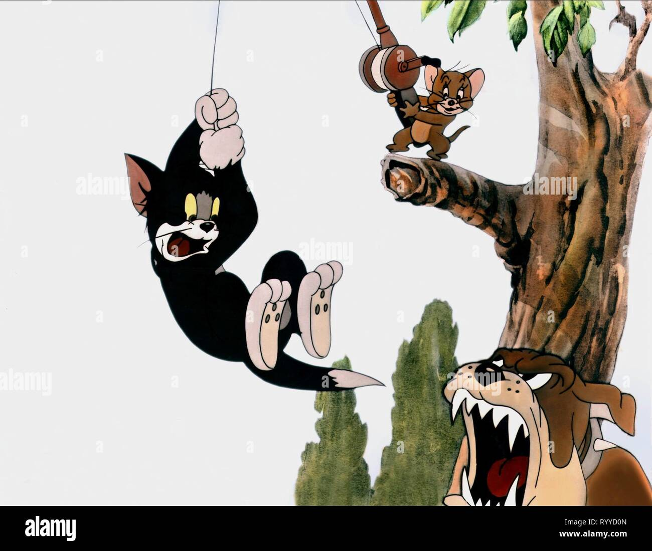 Tom And Jerry High Resolution Stock Photography And Images Alamy
