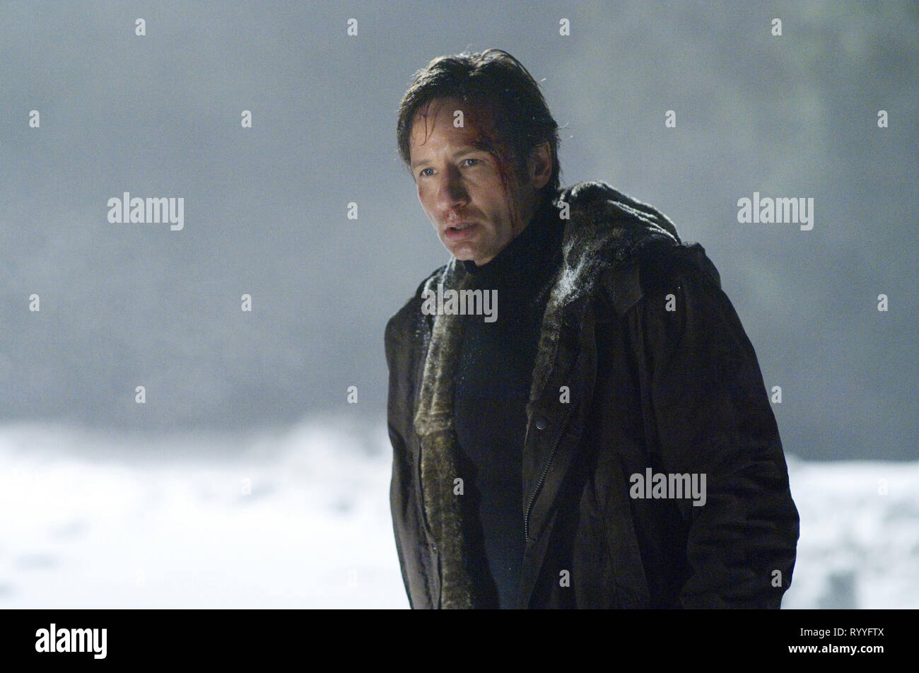 DAVID DUCHOVNY, THE X FILES: I WANT TO BELIEVE, 2008 - Stock Image