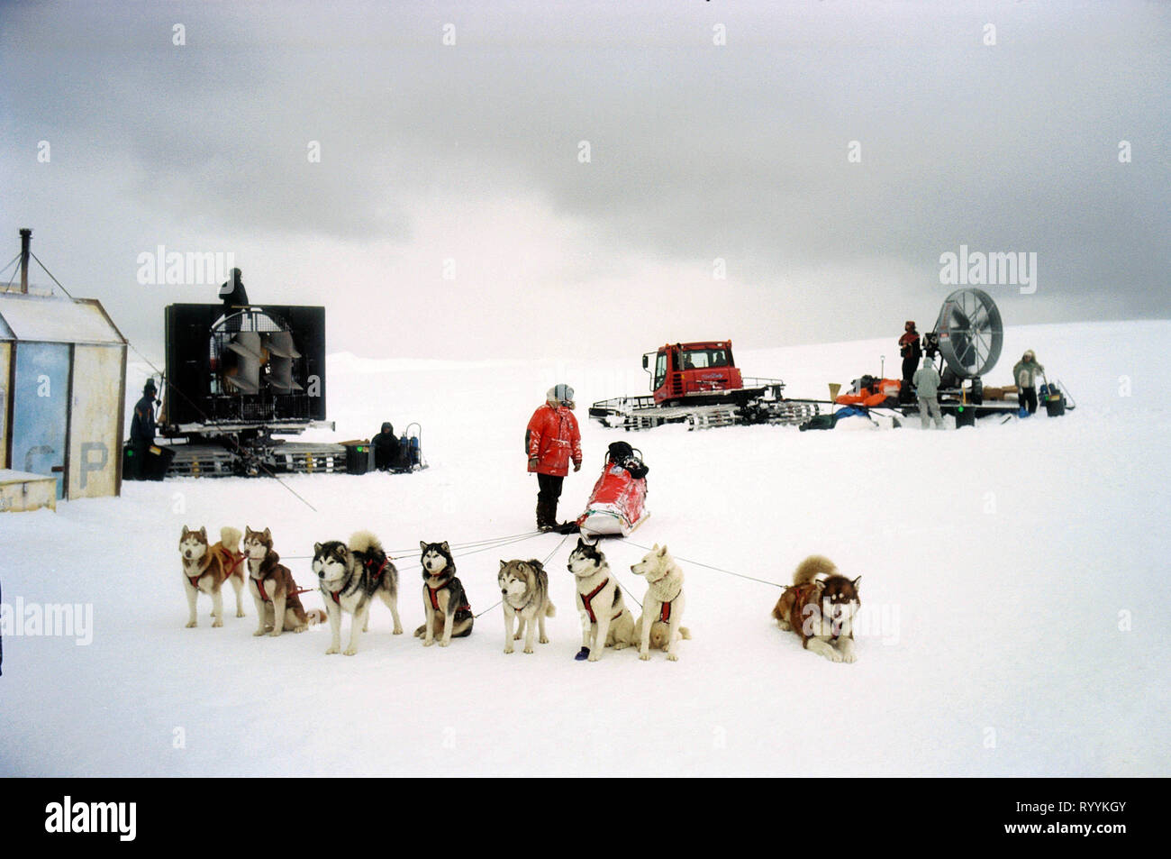 eight below full movie free download in english