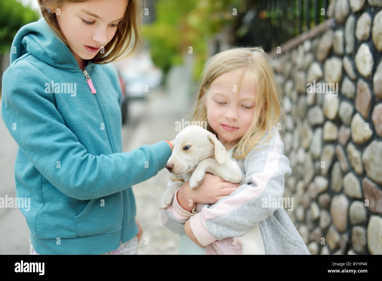 Two Cute Young Sisters Holding Small White Puppy Outdoors Kids Playing With Baby Dog On Summer Day Domestic Animals And Pets For Children Stock Photo Alamy