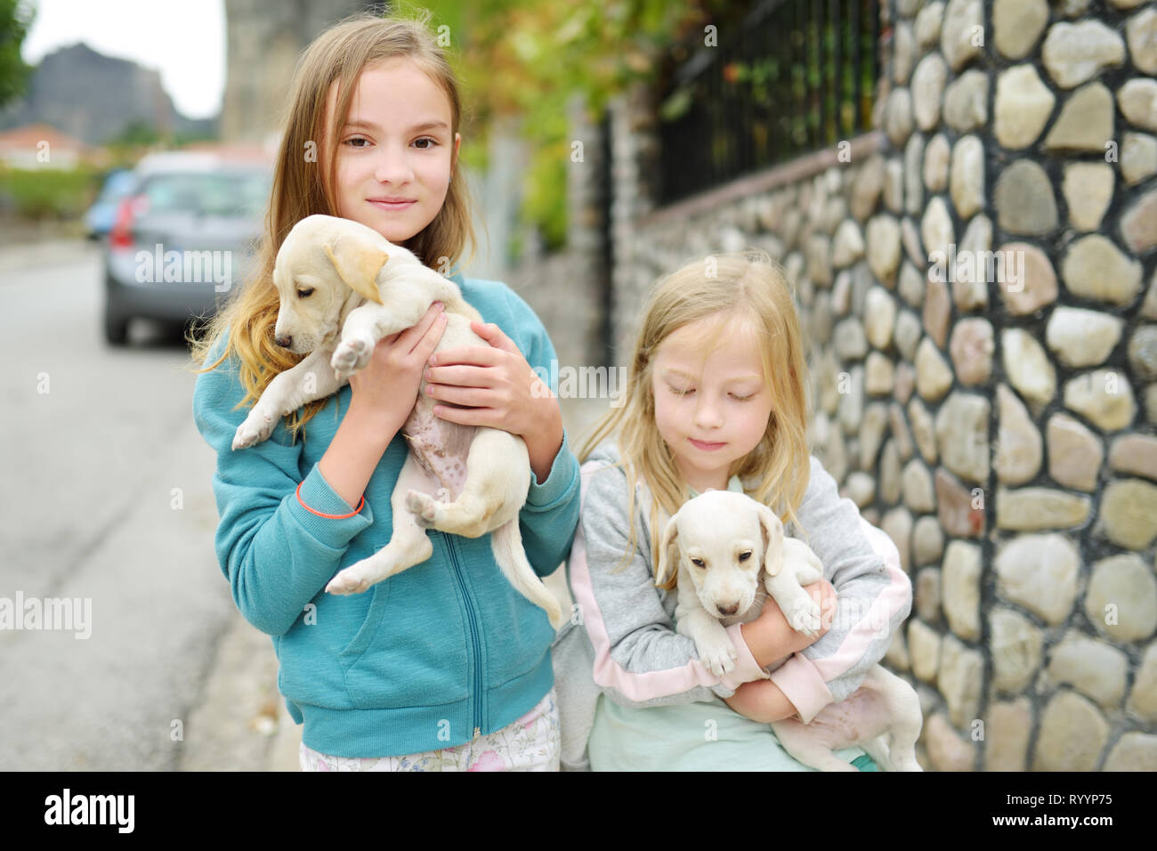 Two Cute Young Sisters Holding Small White Puppies Outdoors Kids Playing With Baby Dogs On Summer Day Domestic Animals And Pets For Children Stock Photo Alamy