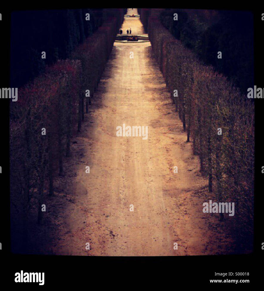 Perspective path - Stock Image