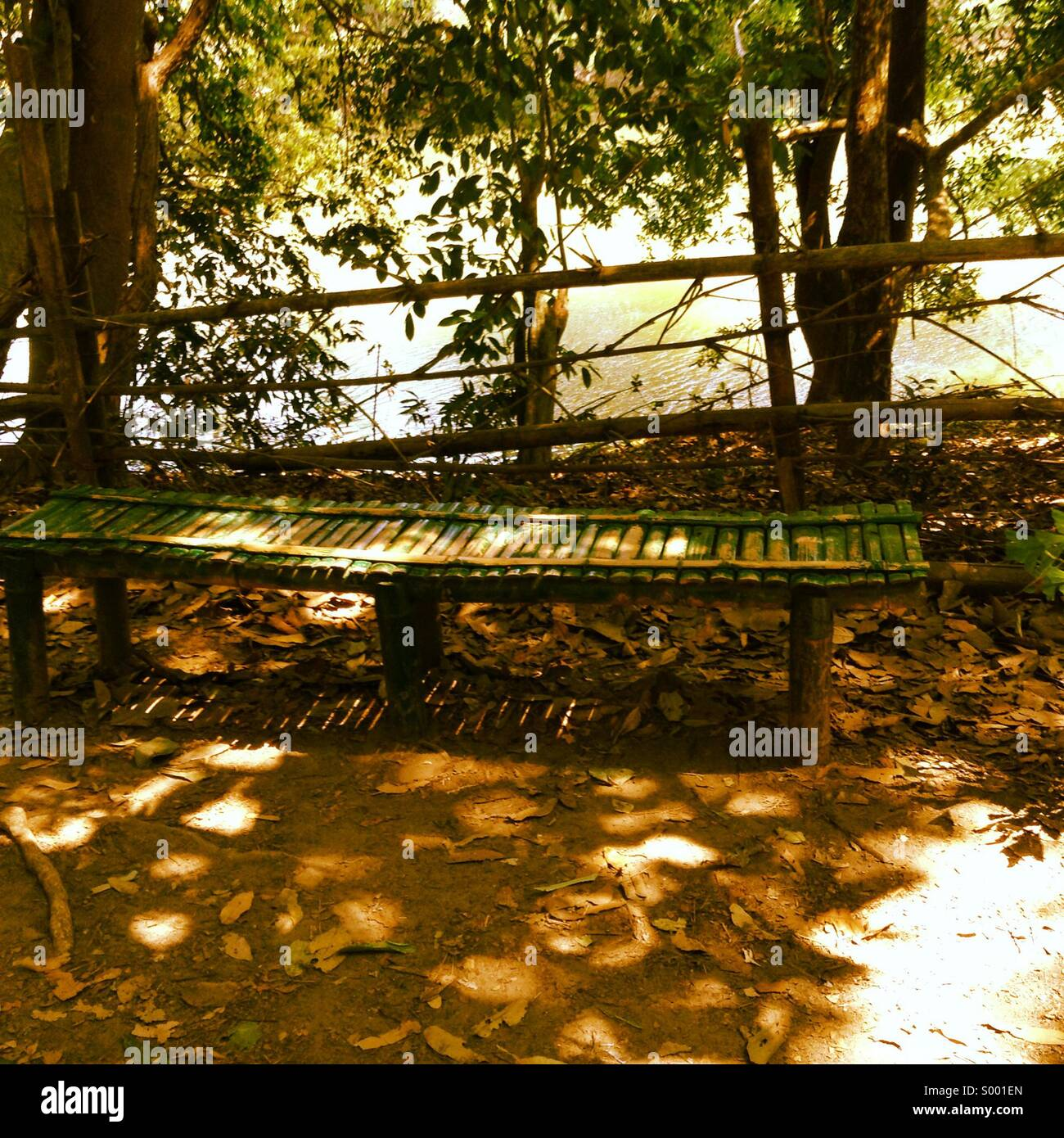 Long wooden bench in a park - Stock Image