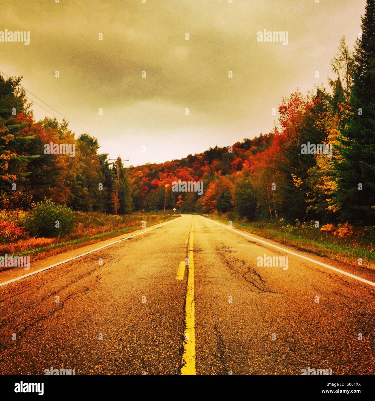 Lonely road, Maine, USA - Stock Image