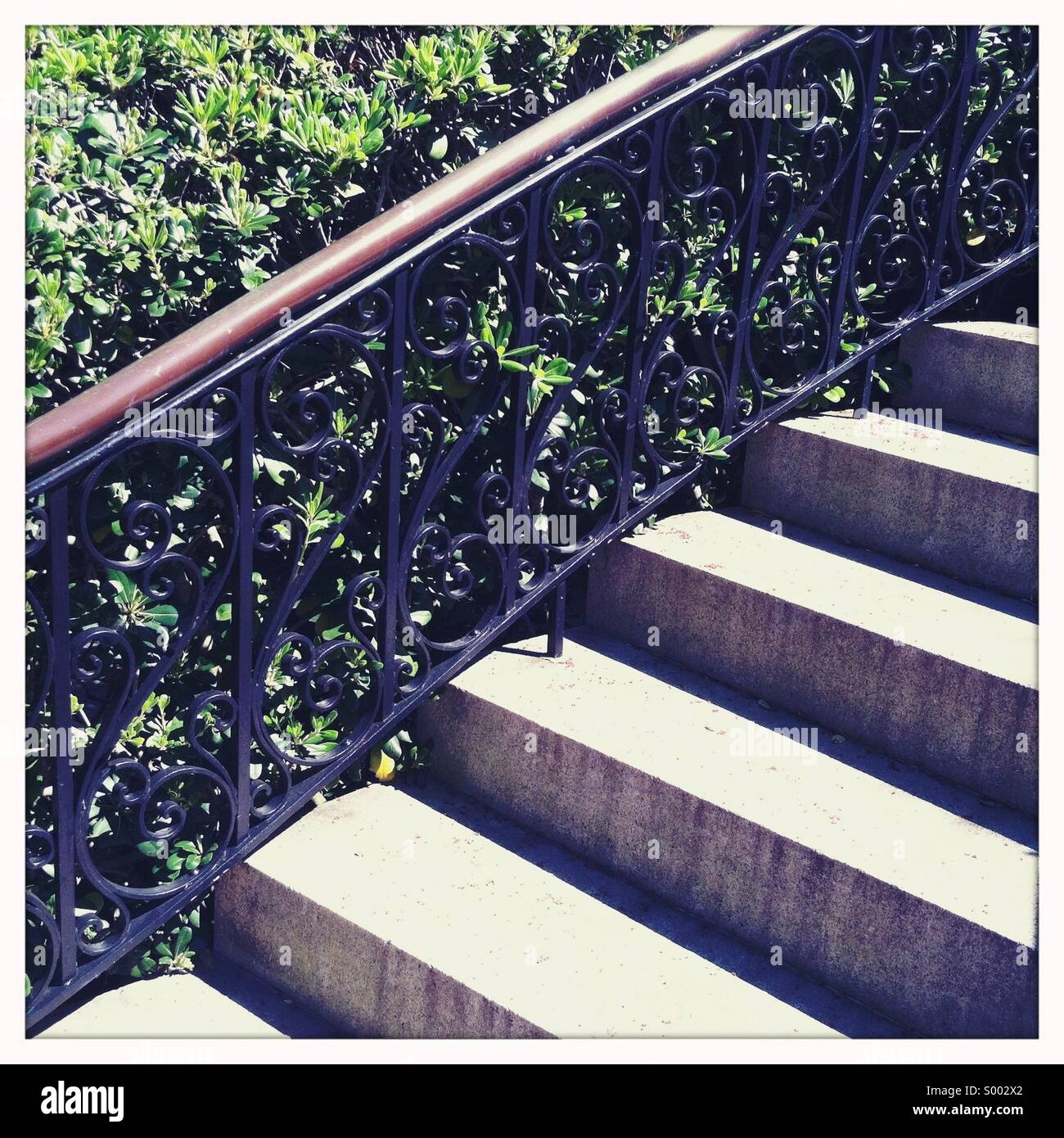 Stairs and a beautiful handrail with green foliage. - Stock Image