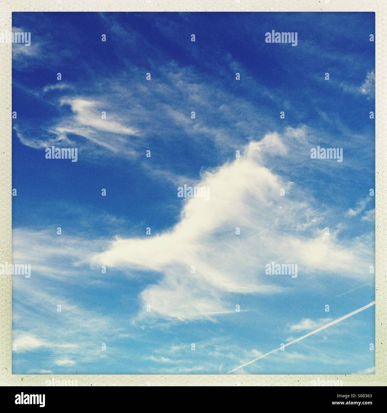 A cloud in the sky shaped like a bird / airplane - Stock Image