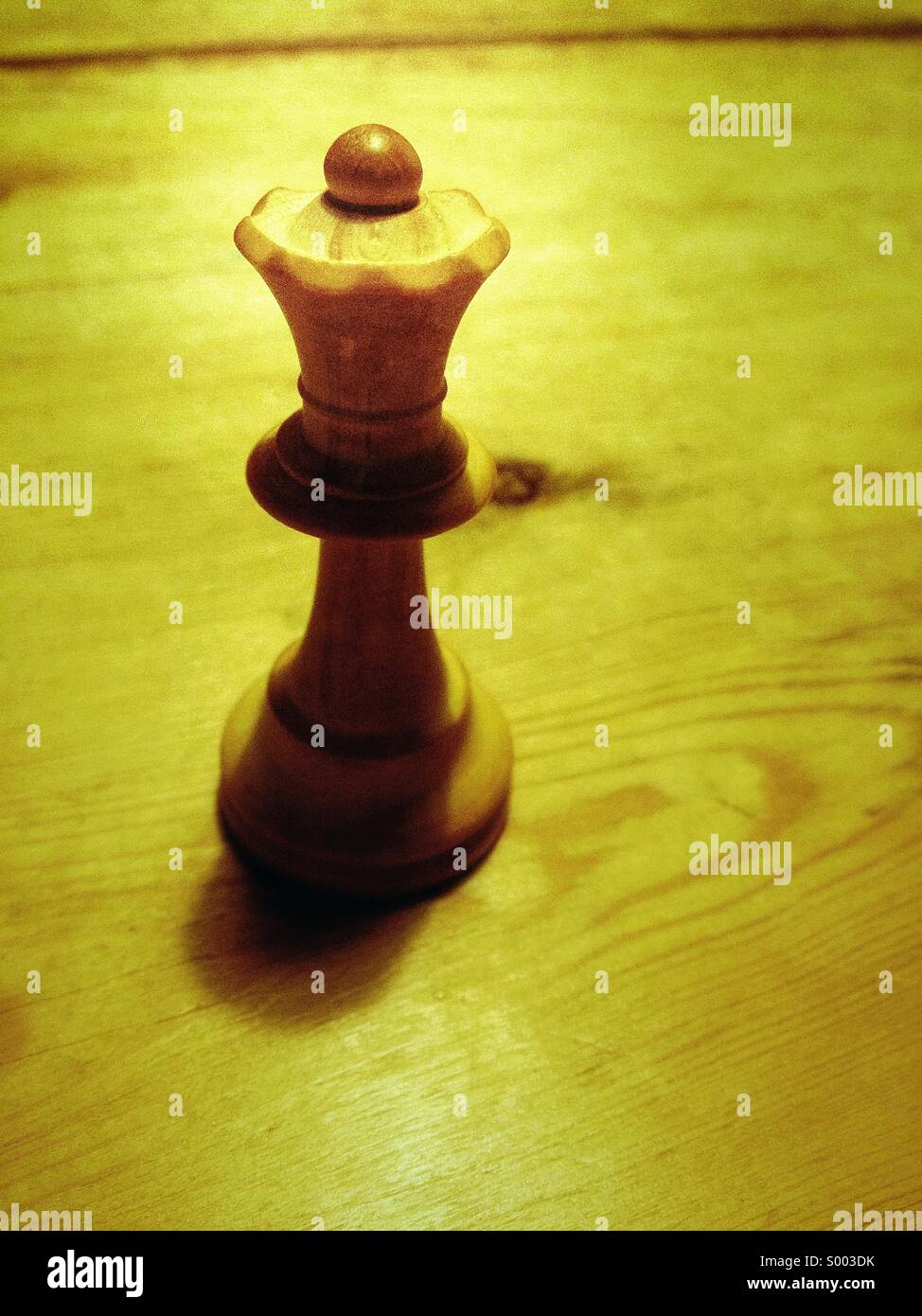 Chess piece - Stock Image