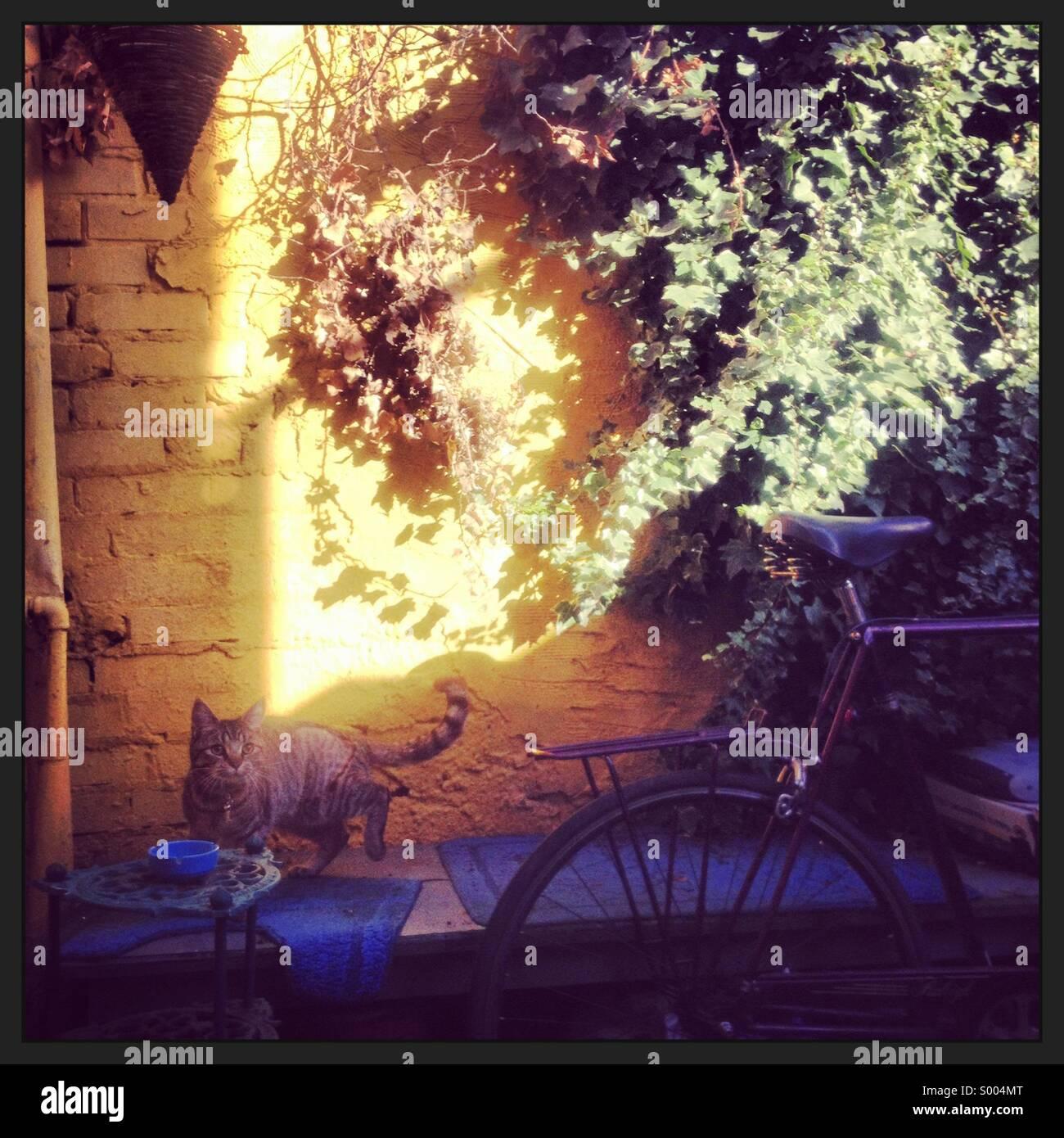 Sunny Sunday - Stock Image