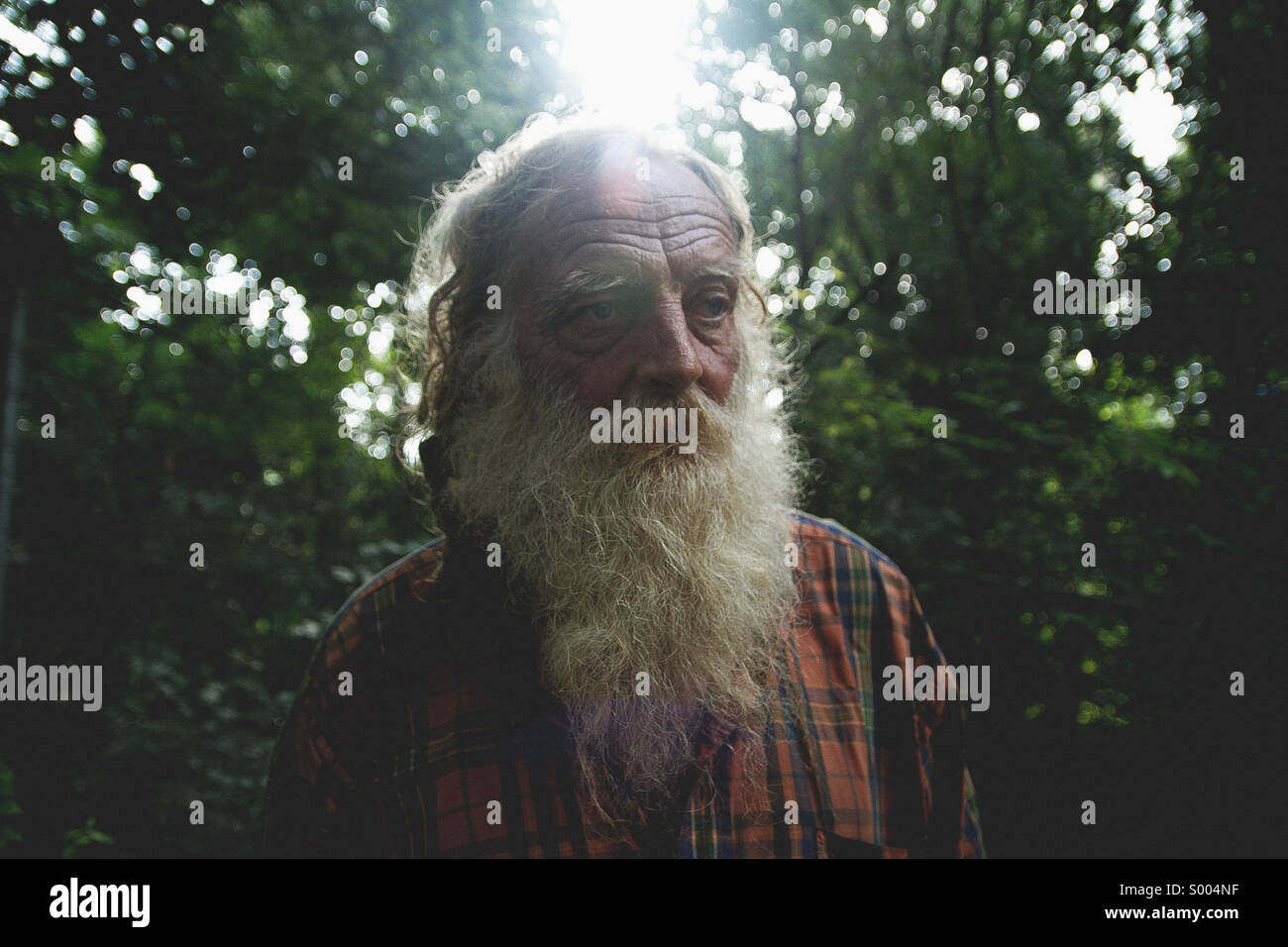 Woodsman - Stock Image