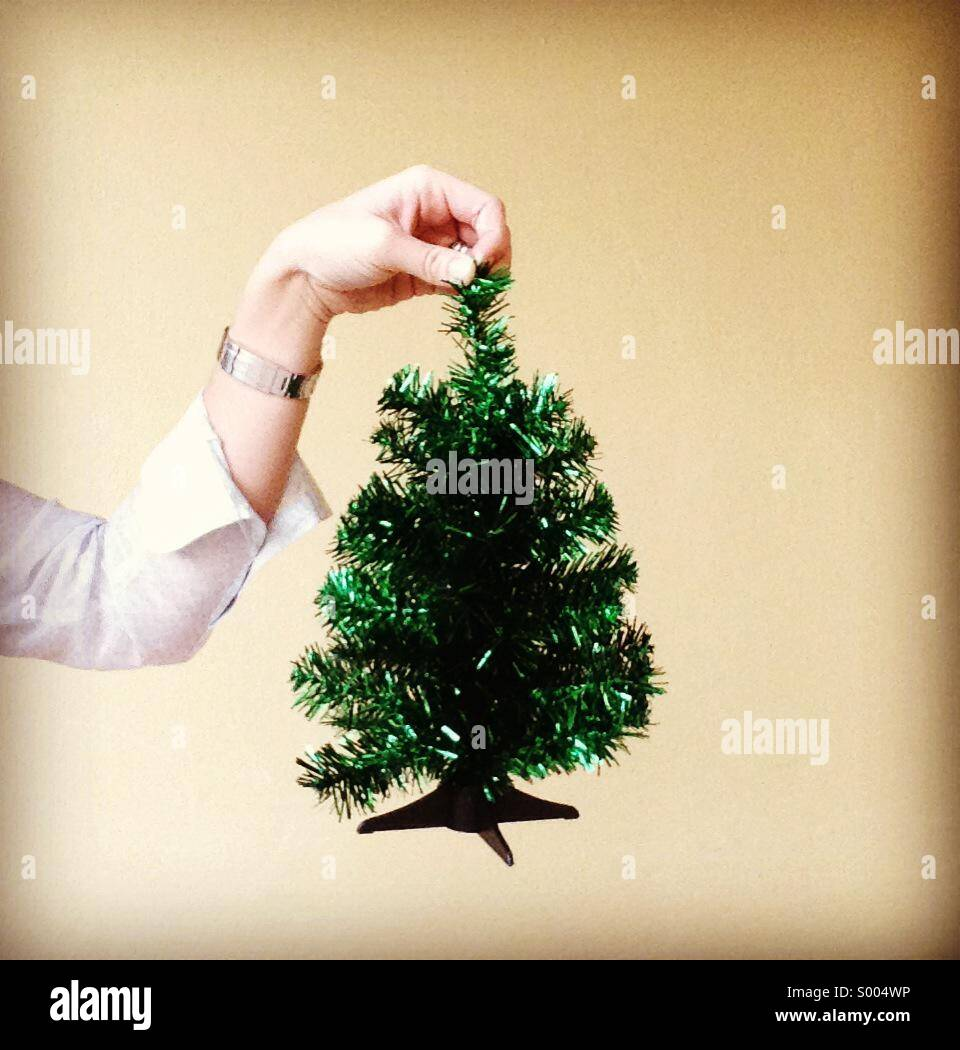 Mini tree. Feeling festive. - Stock Image