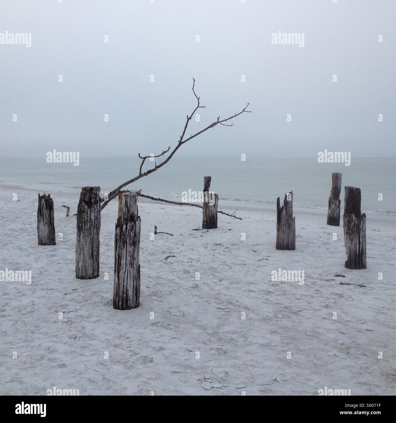 Old dock/ jetty in mist on Fort Myers Beach, Florida, USA Stock Photo