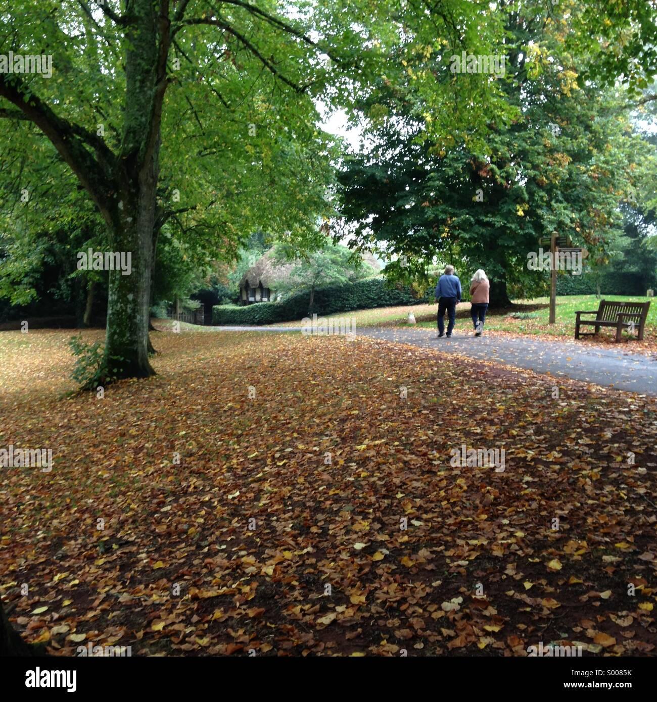 Autumn scene at Cockington village in Torquay, English Riviera (Torbay), United Kingdom. - Stock Image