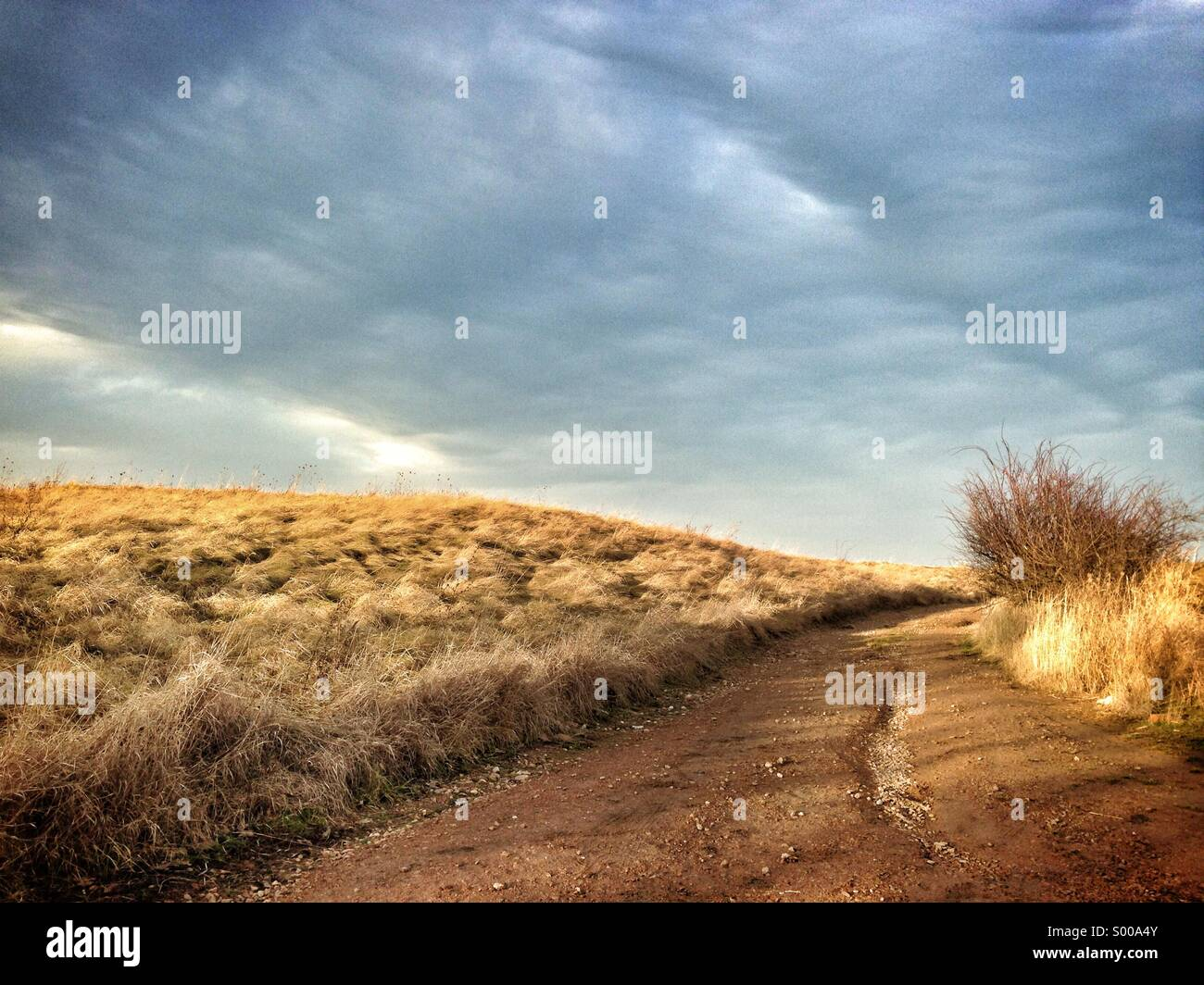A dirt trail leading through a field - Stock Image