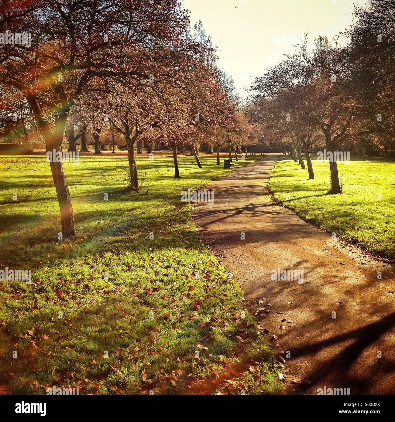 Path through Florence park In oxford, UK - Stock Image