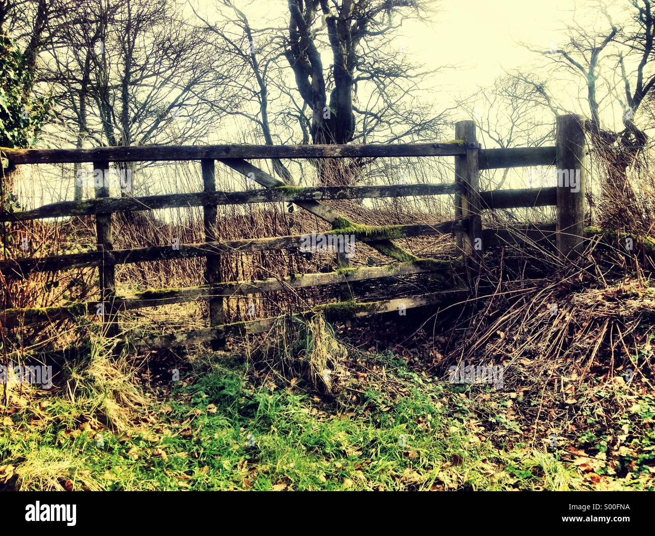 Countryside view - Stock Image