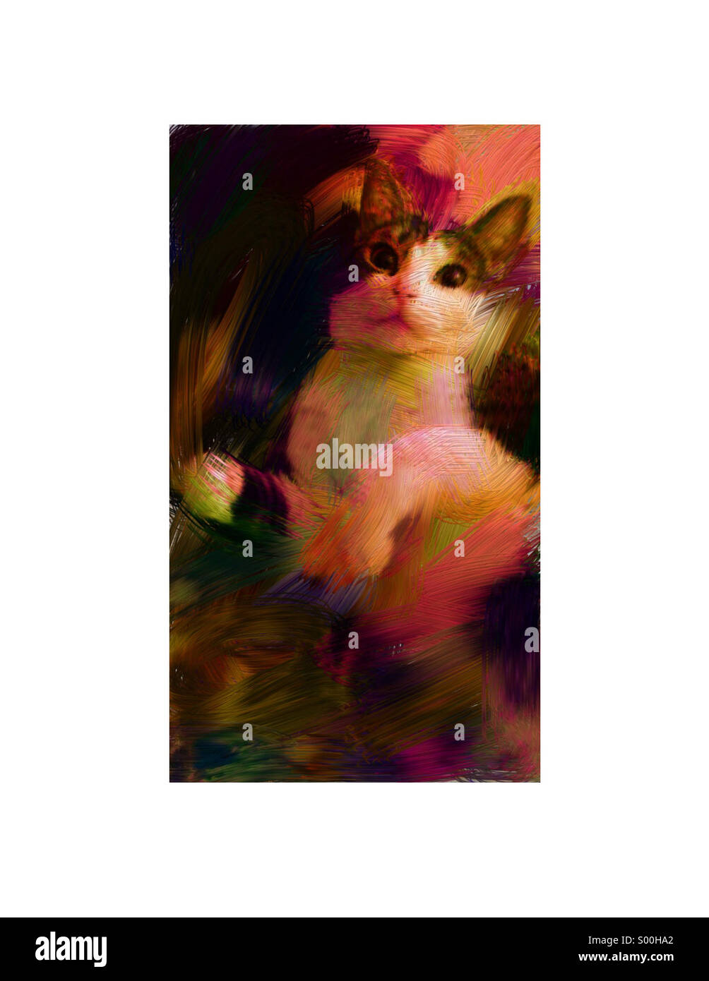 Artistic kitty cat looks as if painted. - Stock Image