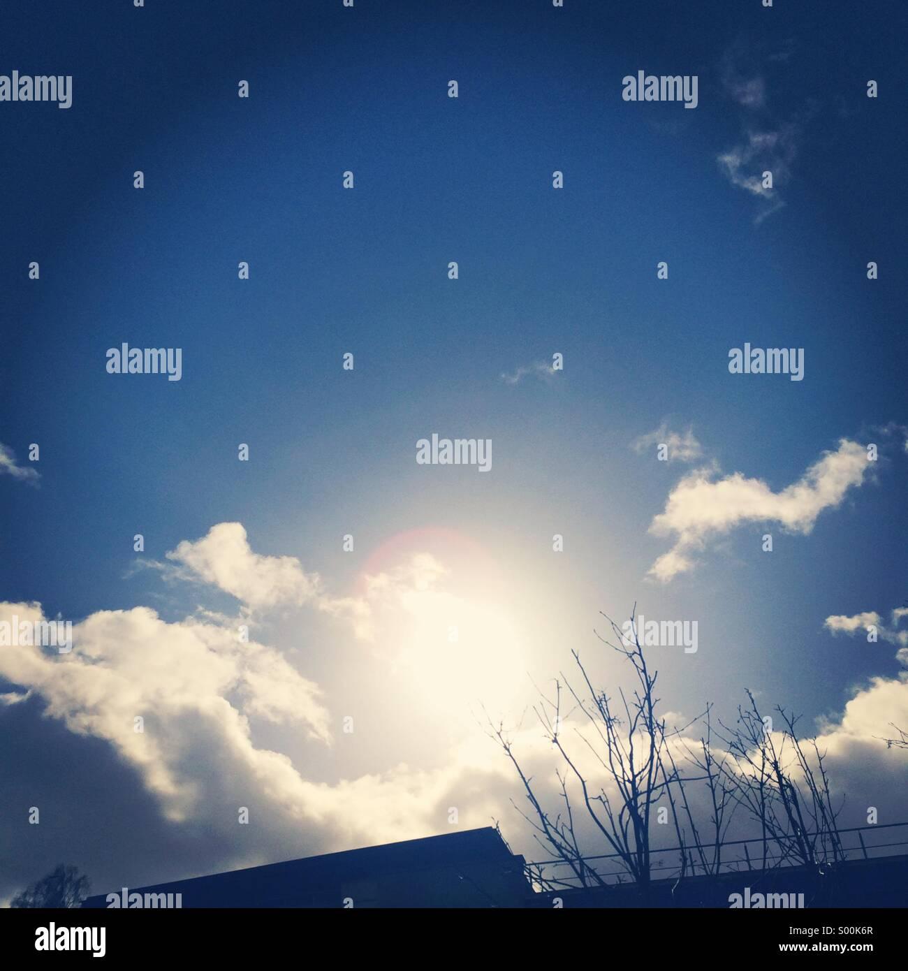 Winter Sun - Stock Image