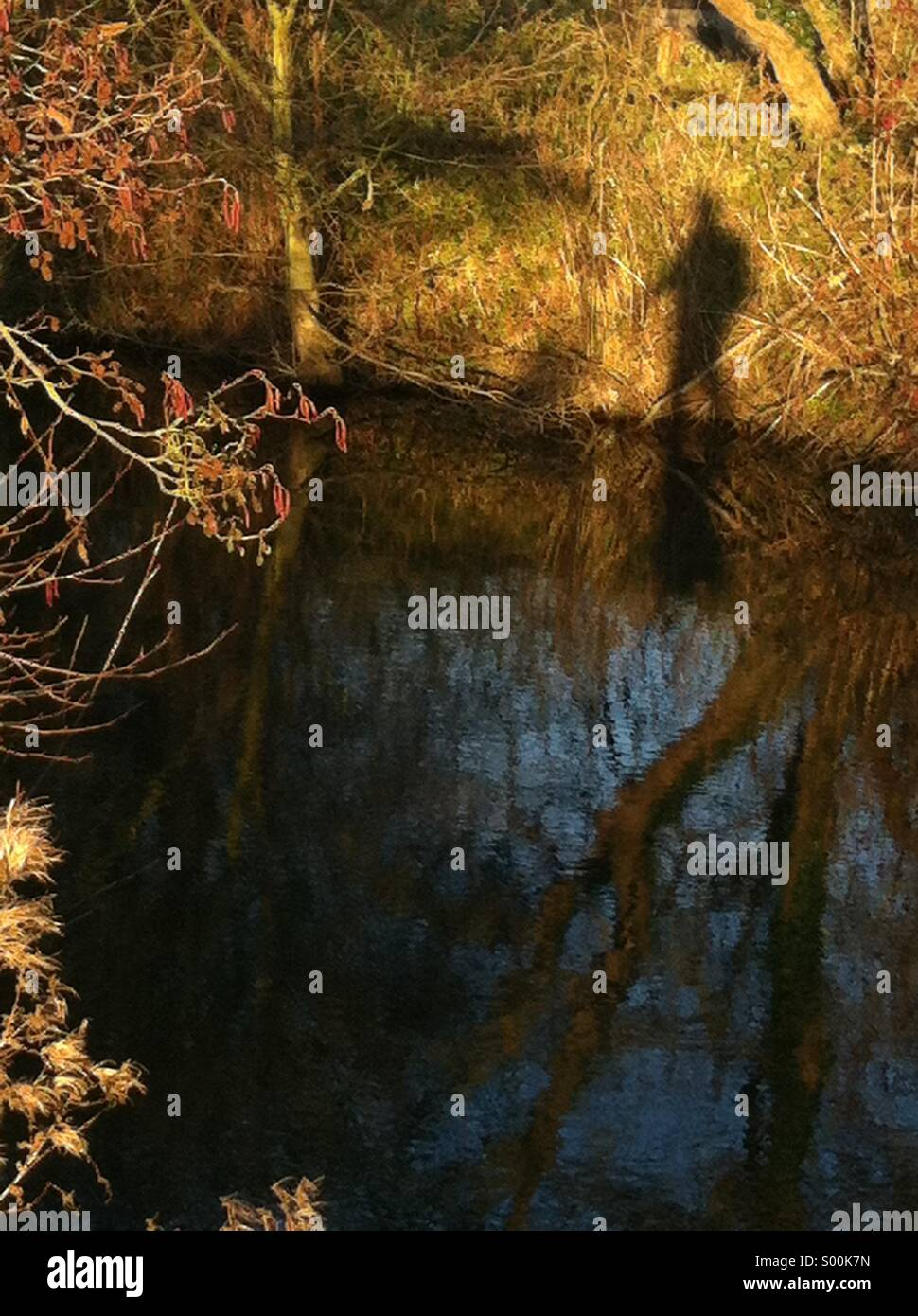Walkers shadow on river bank - Stock Image