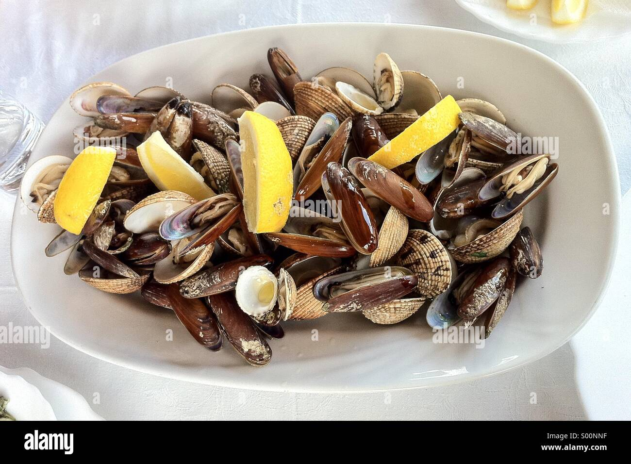Sea food platter shells - Stock Image