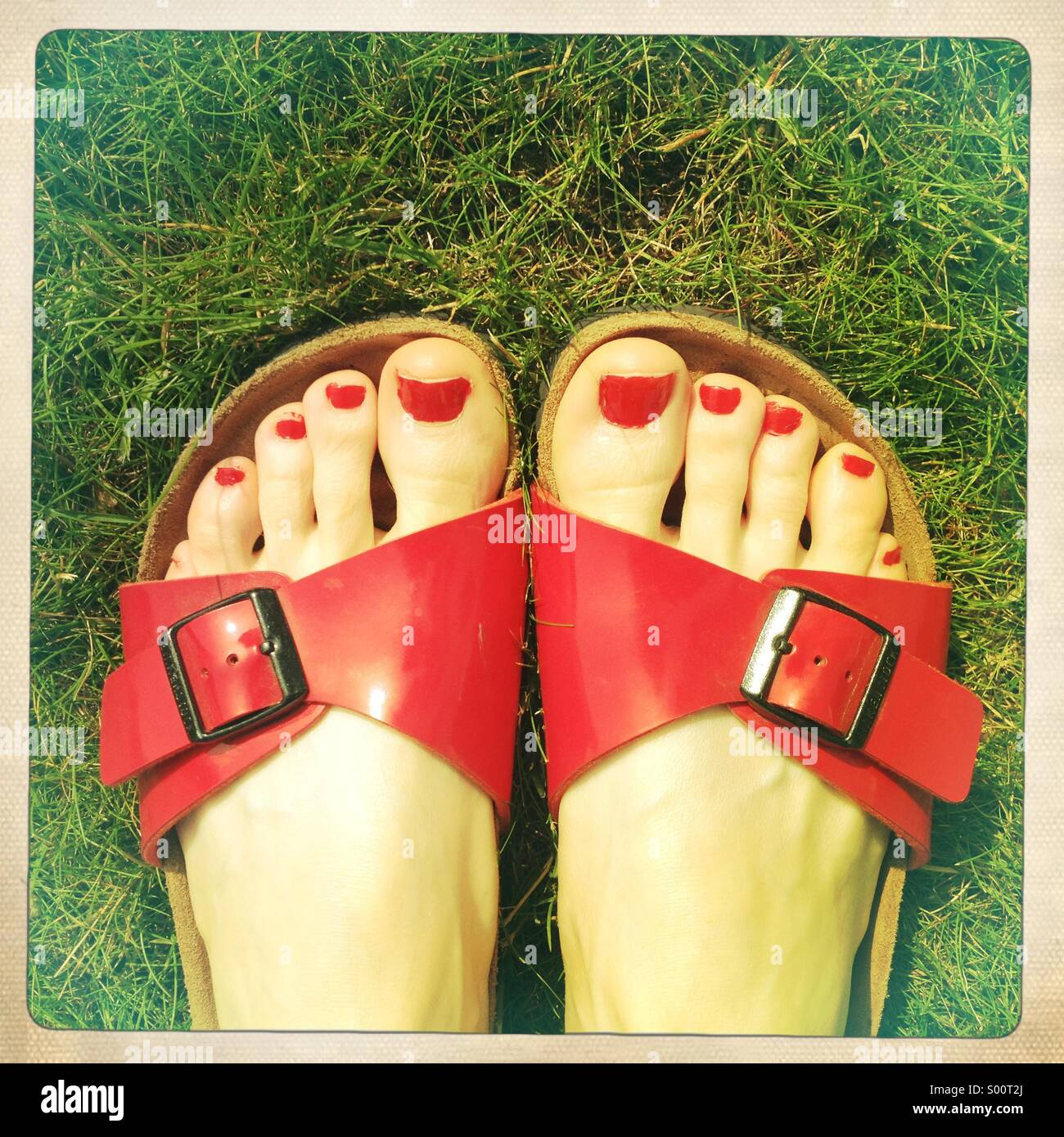 Painted toes in sandals on grass Stock Photo