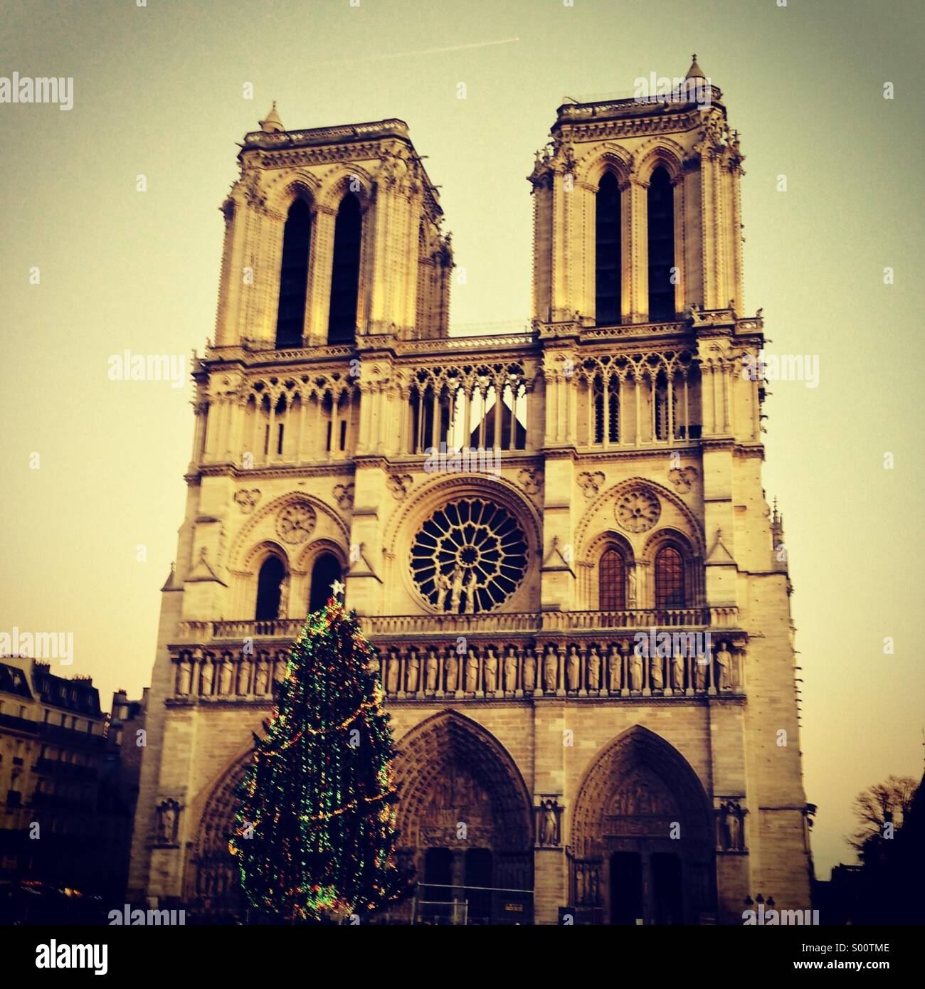 Christmas at Notre Dame de Paris Stock Photo