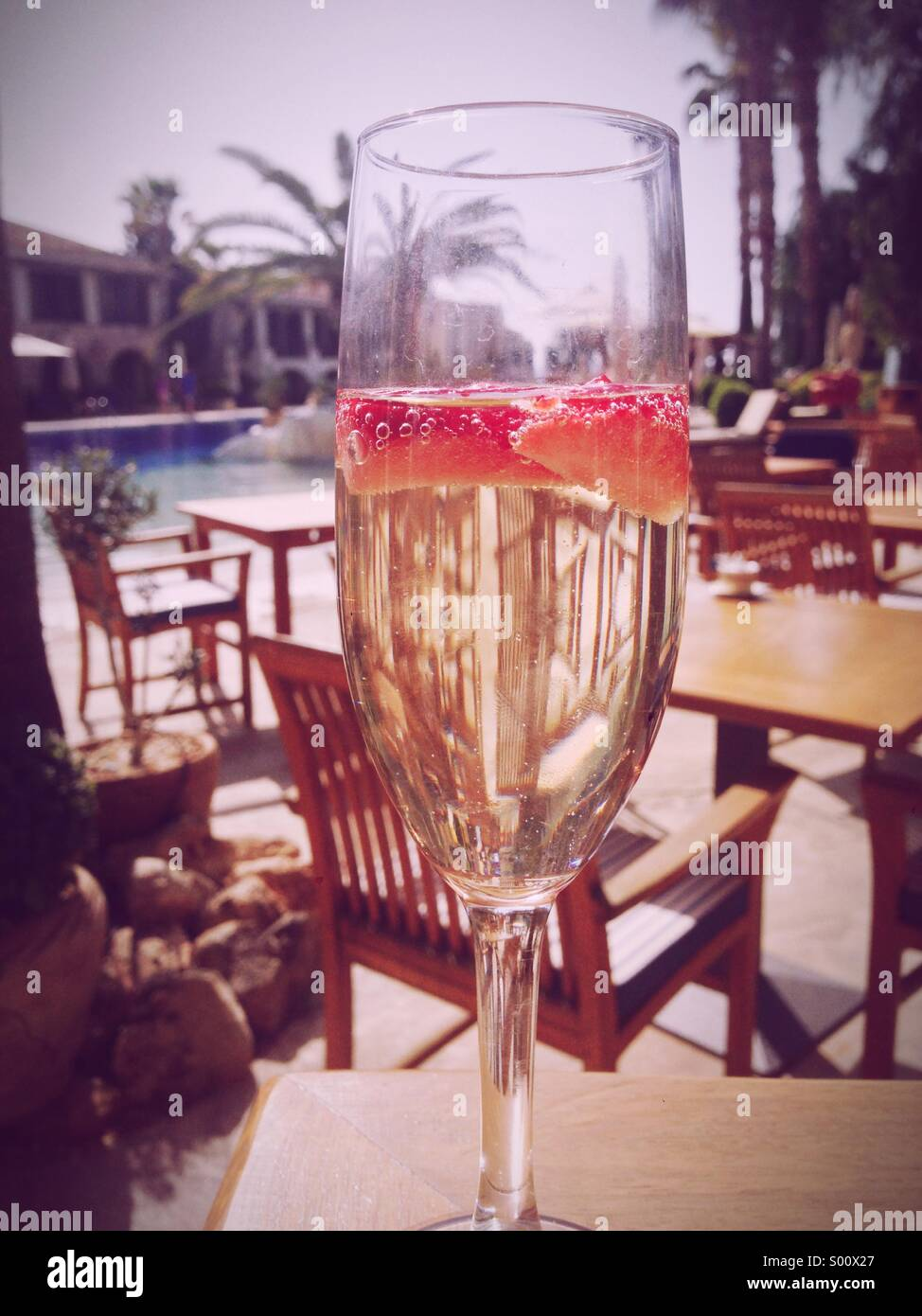 Champagne and strawberries at breakfast on a Cyprus poolside holiday resort with palm tree - Stock Image