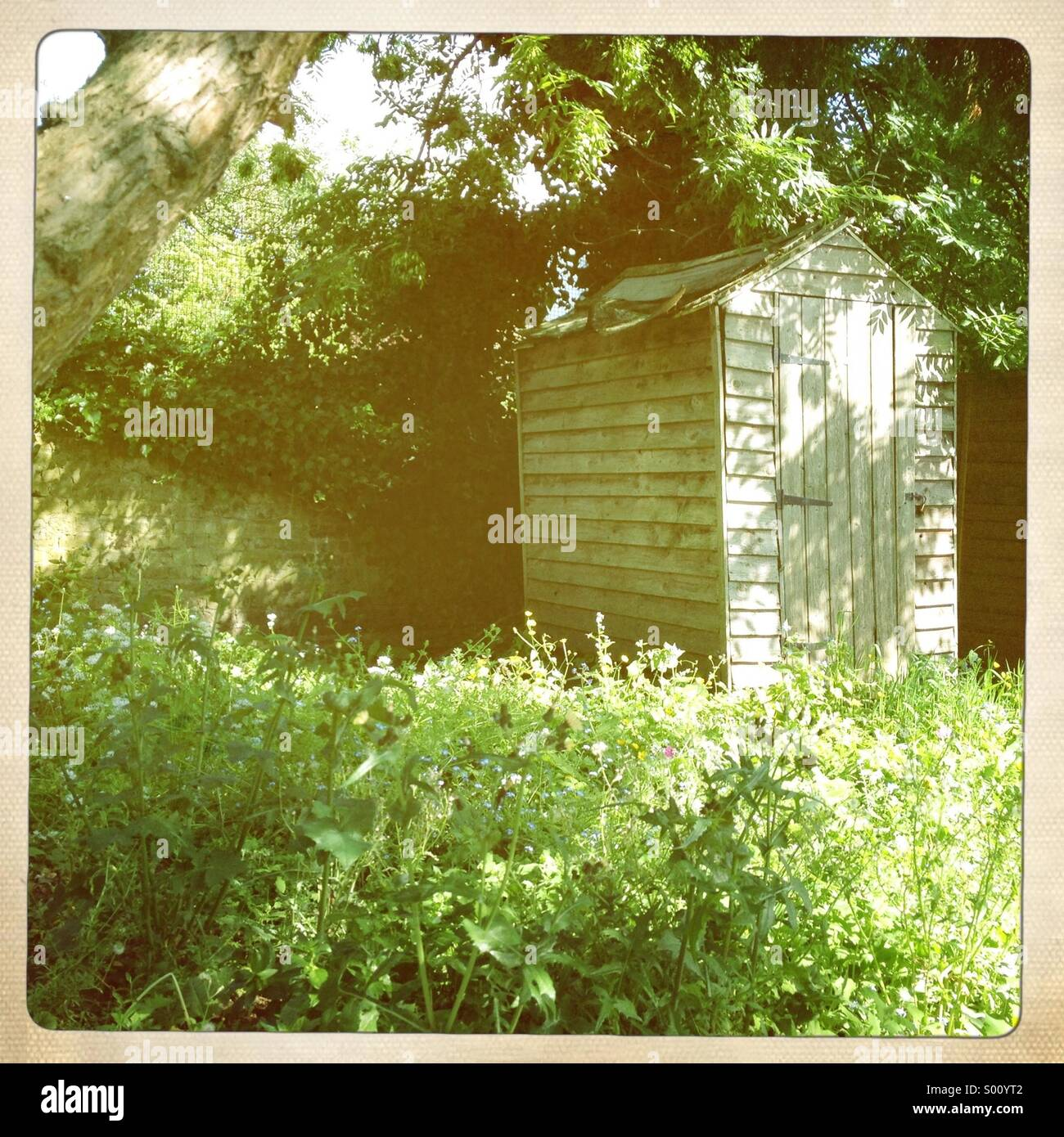 Garden shed - Stock Image