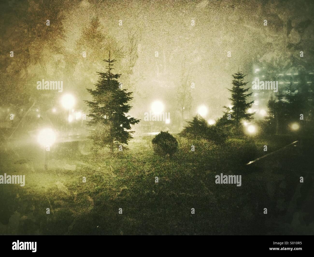 Foggy night - Stock Image