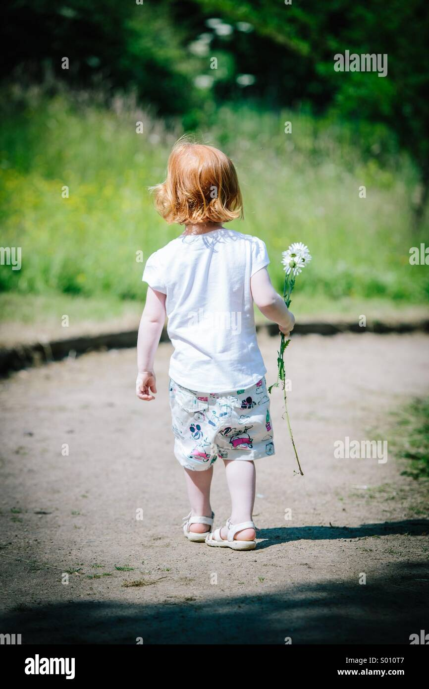 Red haired girl walking away in sun holding a daisy - Stock Image