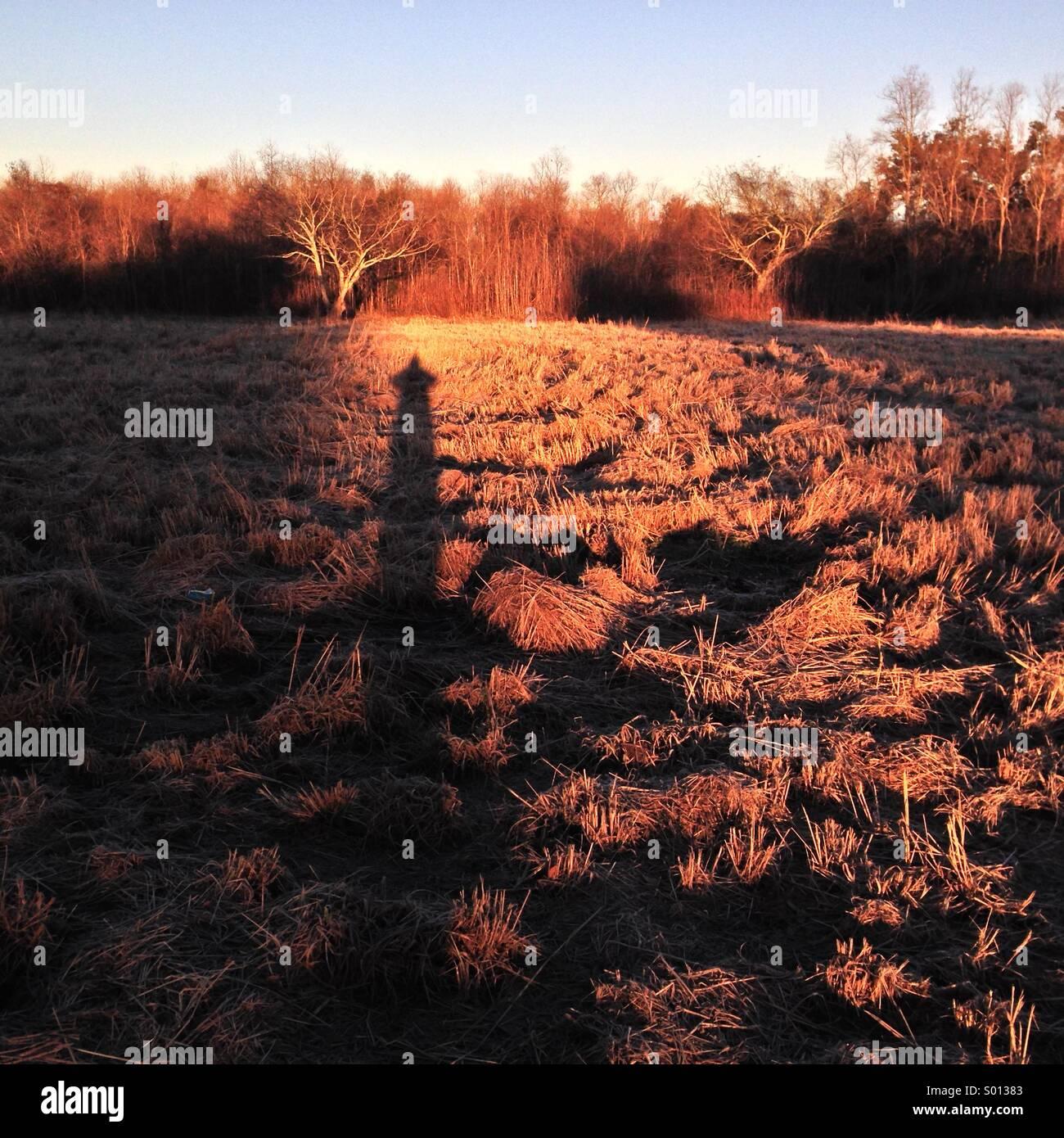 Tall dusk shadow over winter open fields. - Stock Image