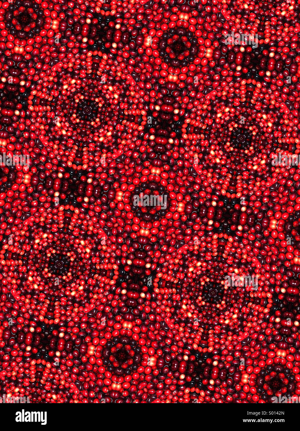 A kaleidoscope pattern made of fresh cranberries - Stock Image