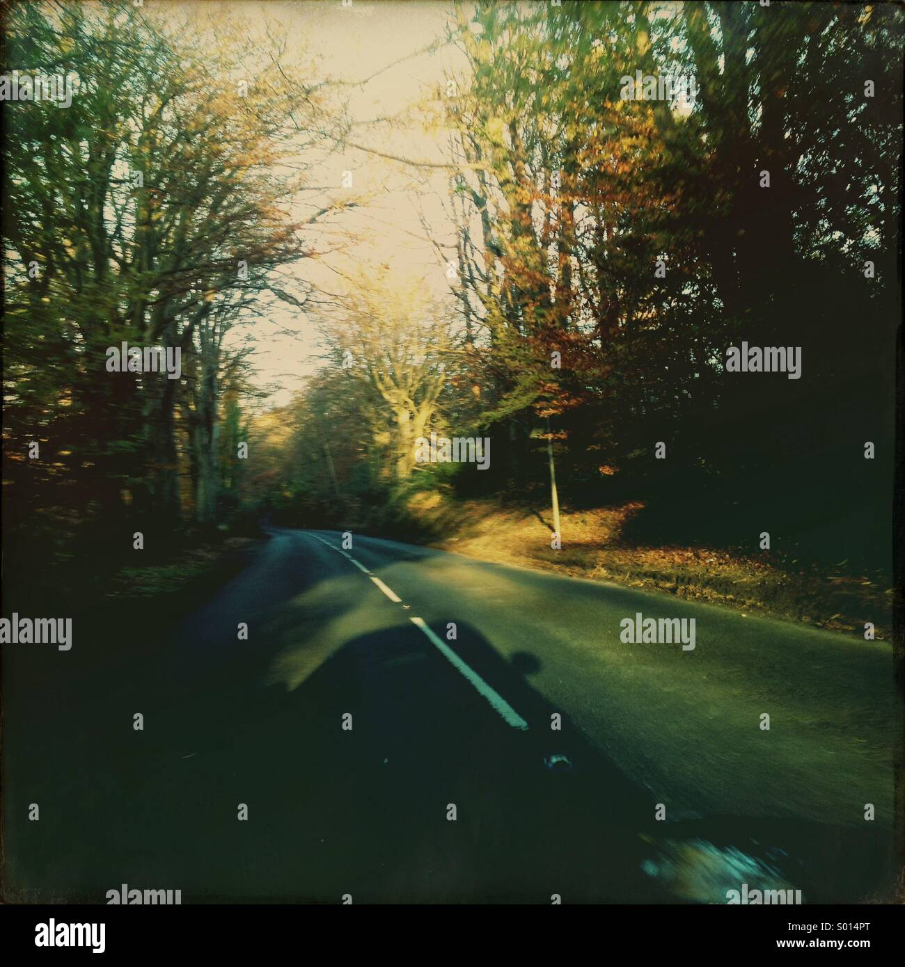 Car shadow on an afternoon Autumn road - Stock Image