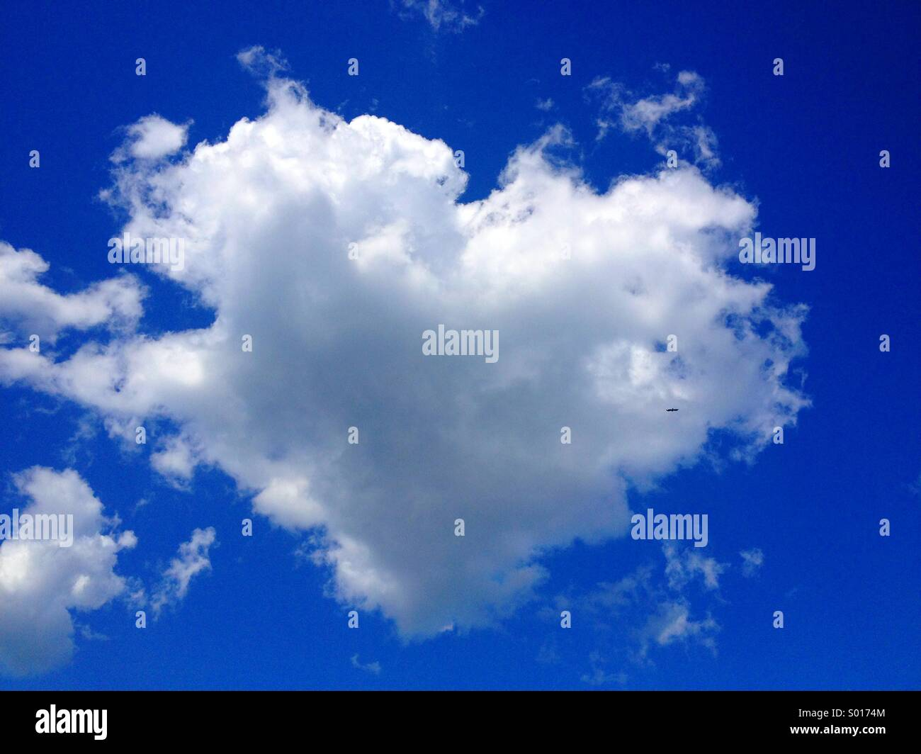 Love is in the air. - Stock Image