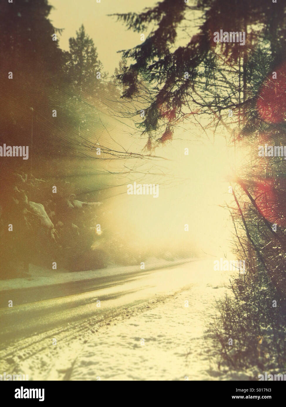 Wet rural road and strong late afternoon sun rays in winter. - Stock Image