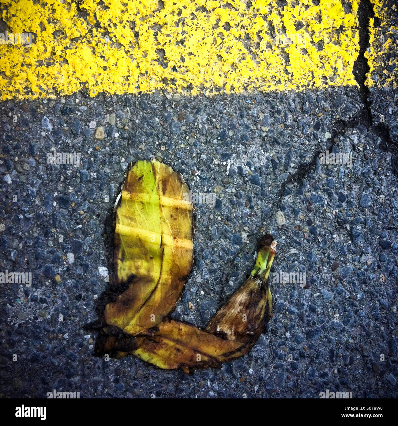 A banana peel that has been run over by a car lying on an asphalt road - Stock Image