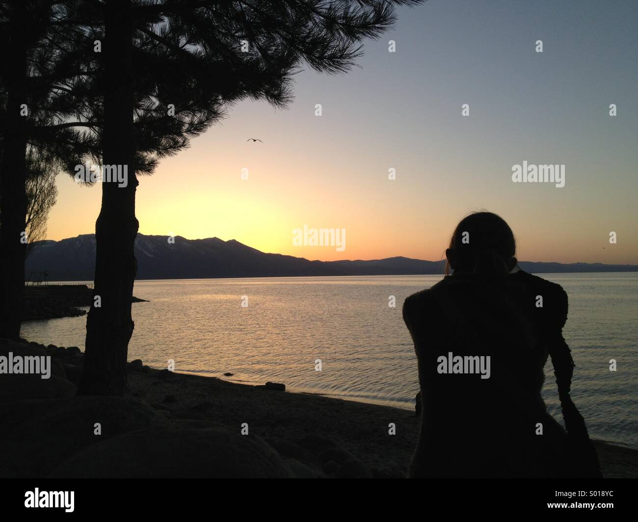 Couldn't have planed this shot. Perfect sunset in Lake Tahoe - Stock Image