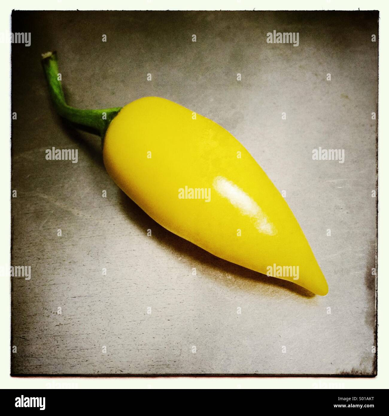 Yellow Chilli - Stock Image