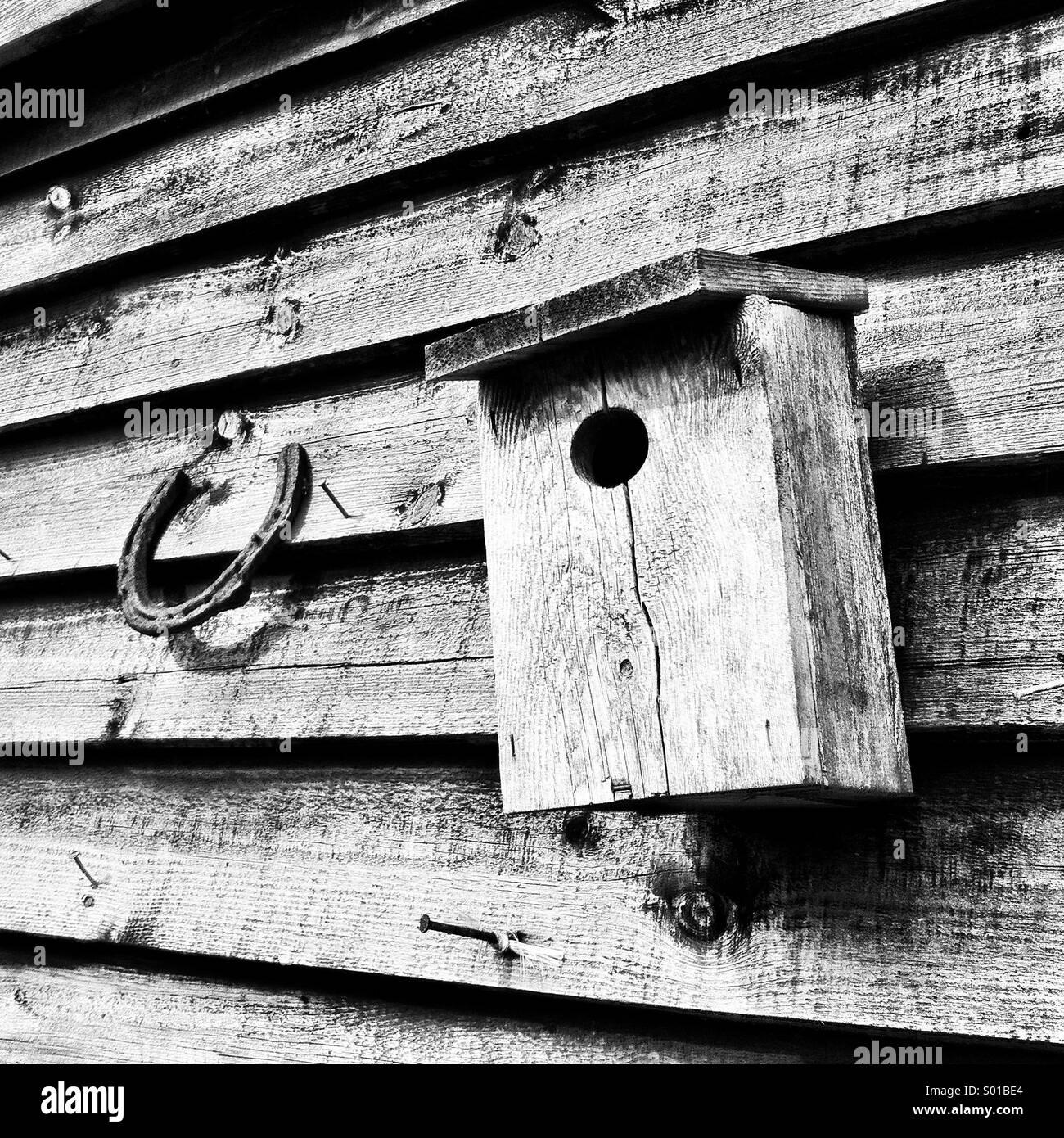 Lucky horseshoe and bird box - Stock Image