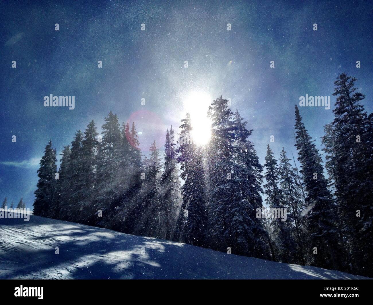 Crystalline snow sparkles in the sunlight in wintery Utah. - Stock Image