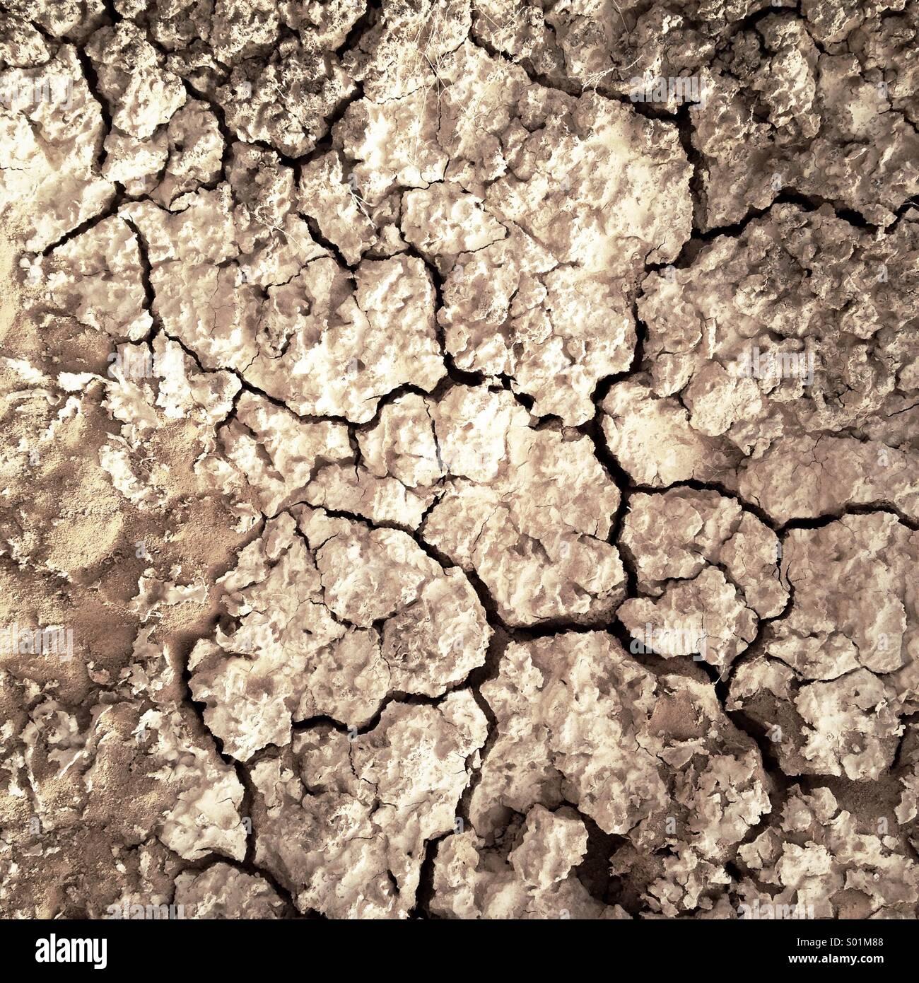 Dry cracked soil - Stock Image