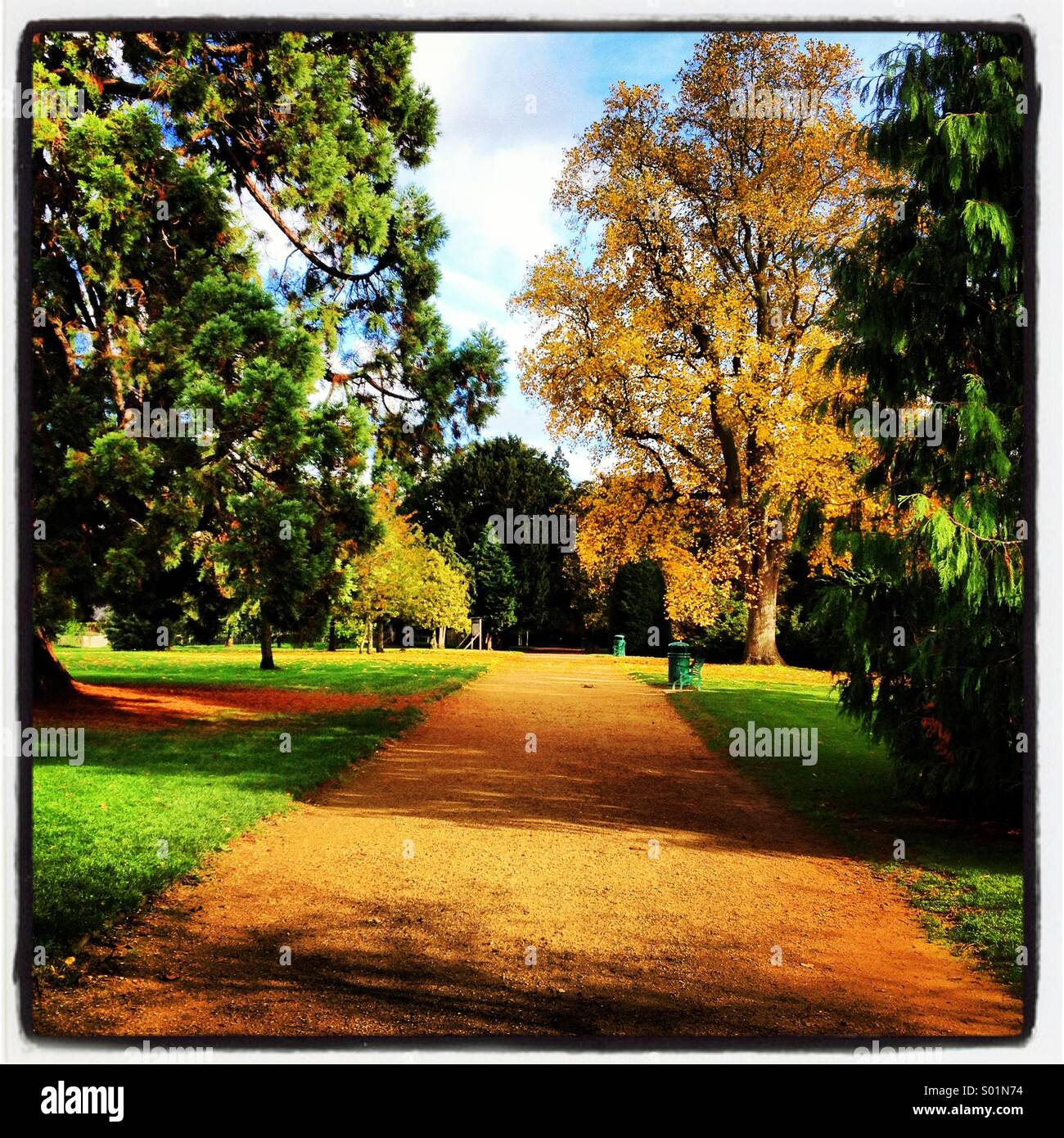 Autumn walk in the park - Stock Image