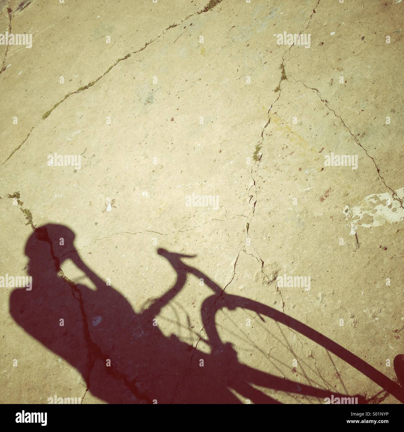 Bicycle riding in the sun - Stock Image