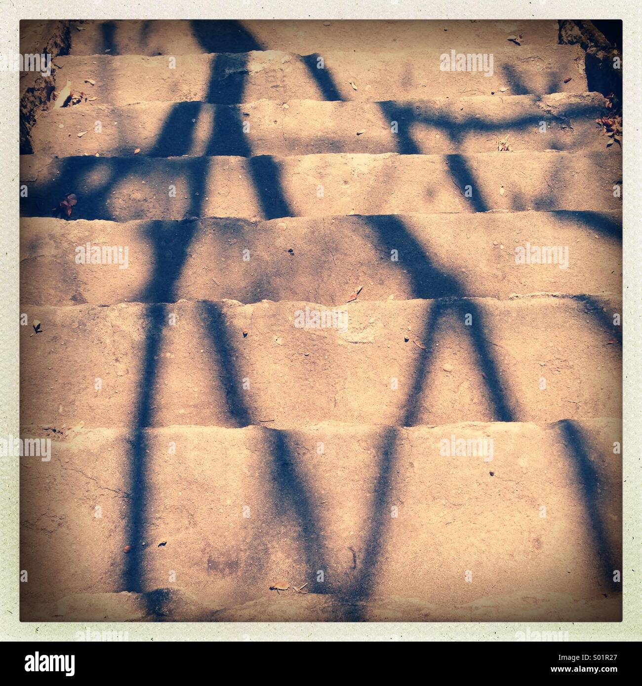Tree shadow on stairs - Stock Image