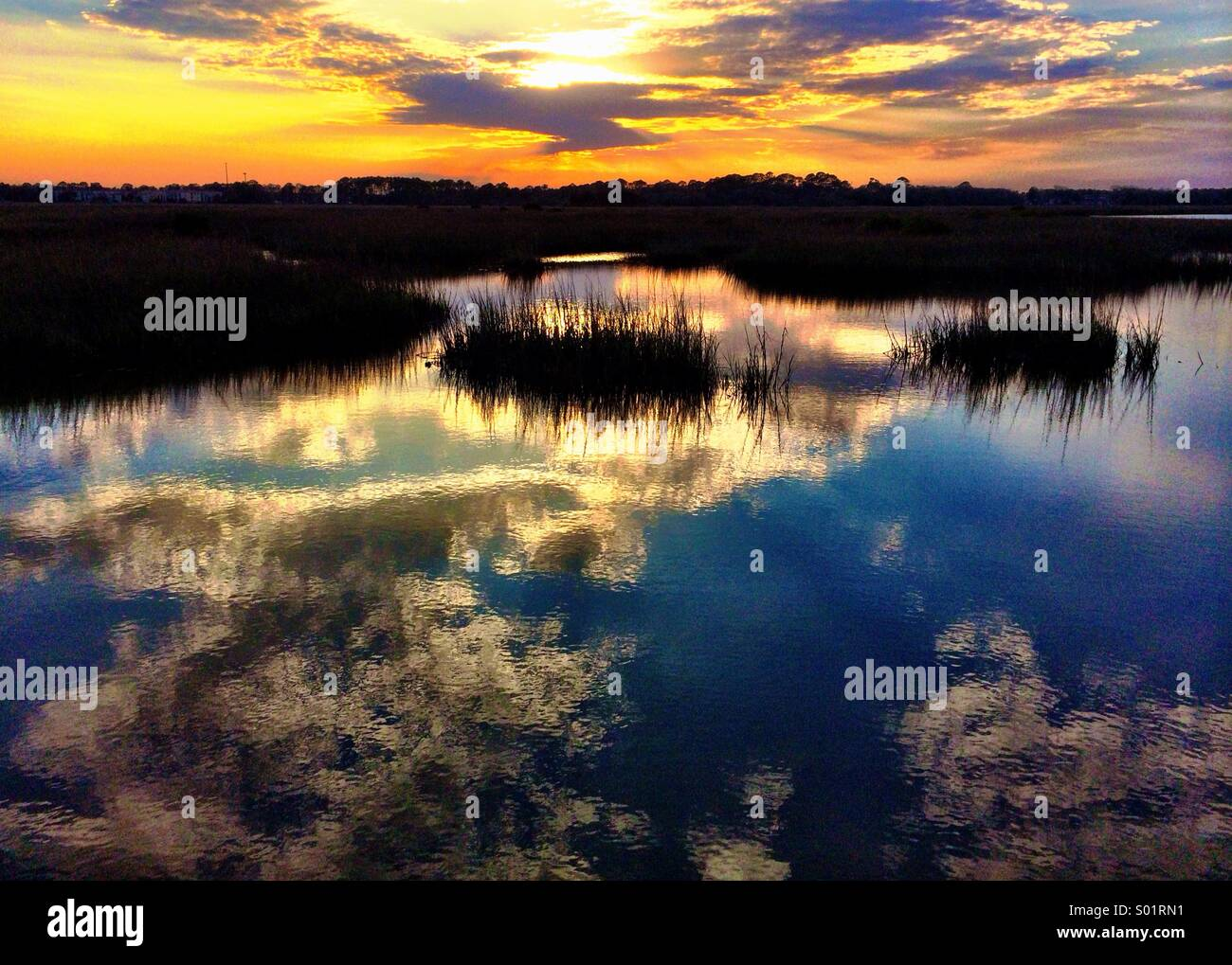 Marsh, St. Augustine, FL - Stock Image