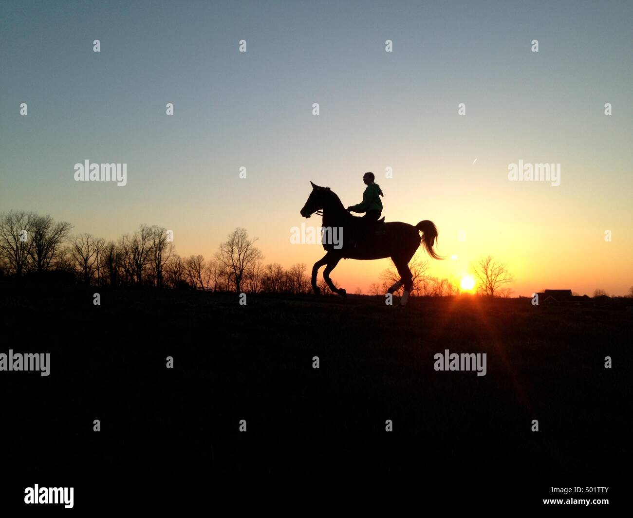Girl riding horse in sunset - Stock Image