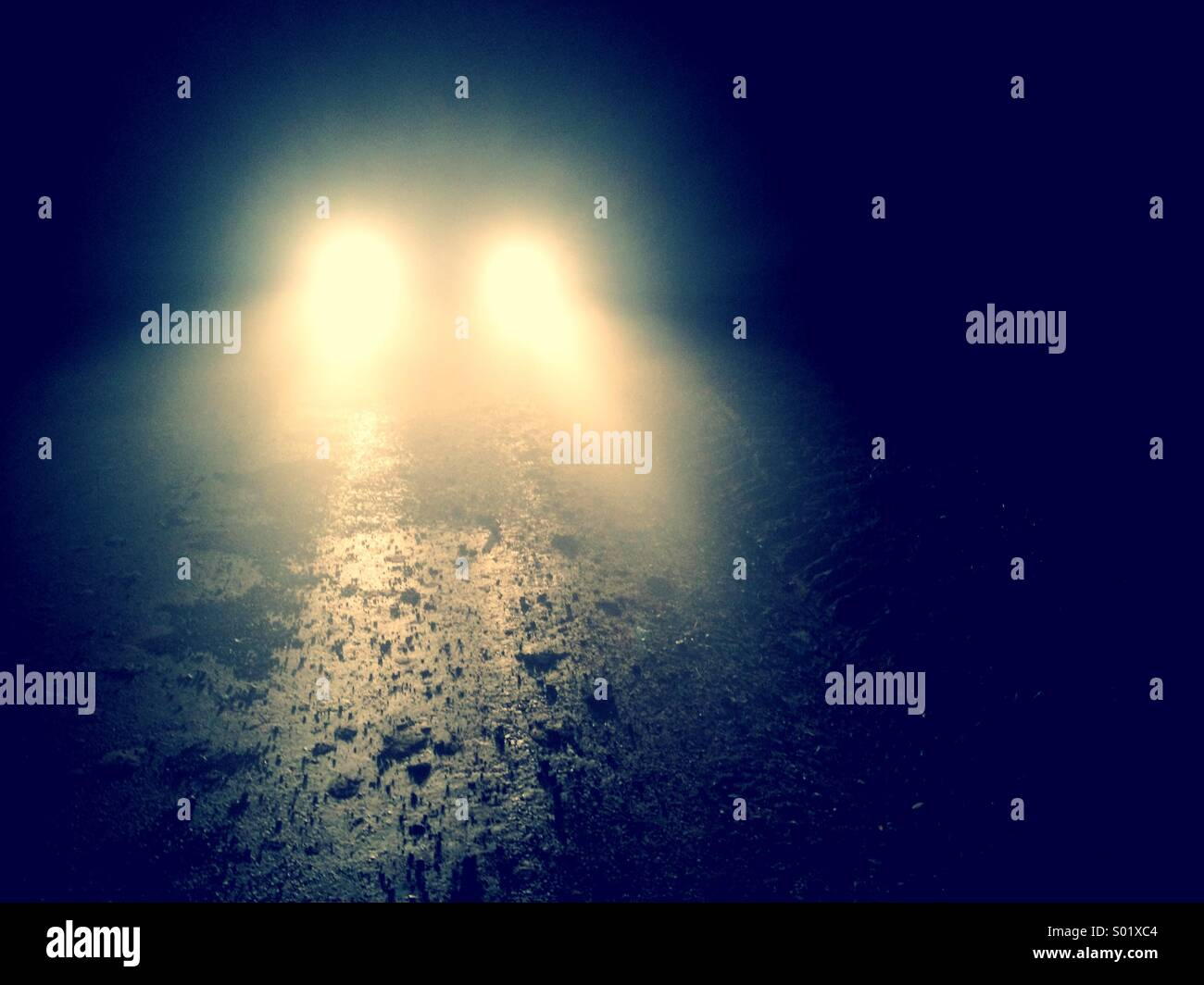 Car headlights on a foggy road at night time - Stock Image