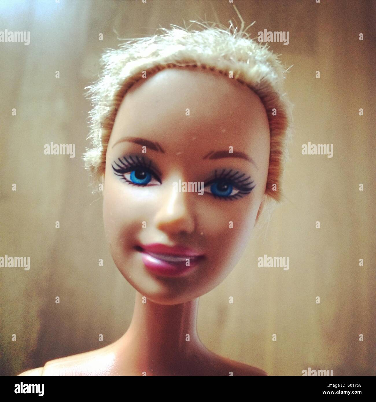 Dolly - Stock Image